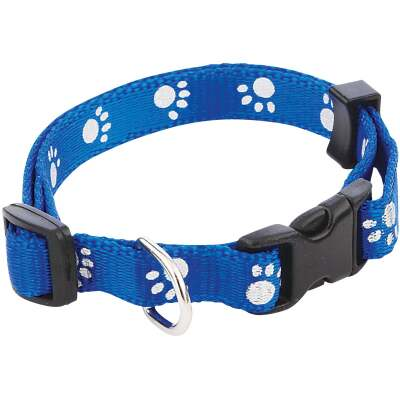 Westminster Pet Ruffin' it Paw Print Reflective 8 In. to 12 In. Nylon Dog Collar